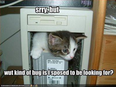 Cats & Computers...You've Gotta Laugh!